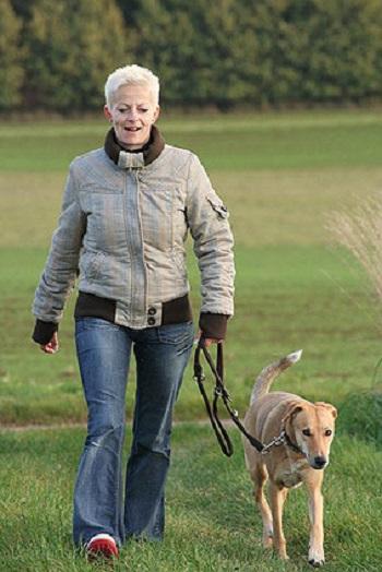 Wer einen Hund kaufen will, sollte vorher auch überlegen, ob er genügend Zeit für den Hund, z.B. tägliche Gassigänge, hat.