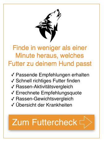 Trigger-Box_Bild-hunde-fan.de