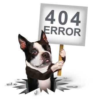 Wenn ein Hund entlaufen ist, ist guter Rat oft teuer. Ein Inserat im Hundemarkt kann helfen