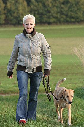 Betreuer einer guten Hundepension gehen mit den Hunden auch spazieren.