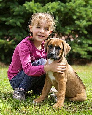 Kinder erlernen mit dem Familienhund ein gesundes Sozialverhalten.