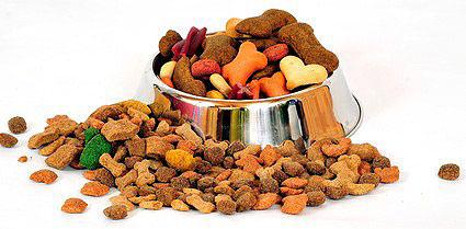 Vegetarisches Trockenfutter für den Hund