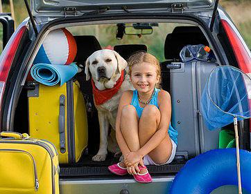 Auch das Lieblingsspielzeug des Hundes sollte im Urlaub nicht fehlen.