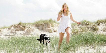 Neben Nord- und Ostsee sind auch die Beneluxstaaten und Dänemark für den Urlaub mit Hund gutgeeignet.