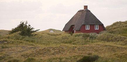 Urlaub mit Hund an der dänischen Ostsee.