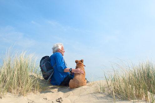 Ein Urlaub mit Hund in Holland macht Spaß, denn es gibt viele hundefreundliche Strände.