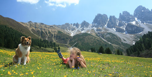 Wer seinen Urlaub mit Hund in Österreich verbringt, findet insbesondere vielfältige Wandermöglichkeiten vor.