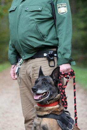 Polizeihund mit Herrchen