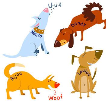 ausgefallene Hundenamen finden