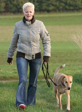 Auch der Gehorsam auf eine größere Distanz ist wichtig beim Hundesport Obedience.