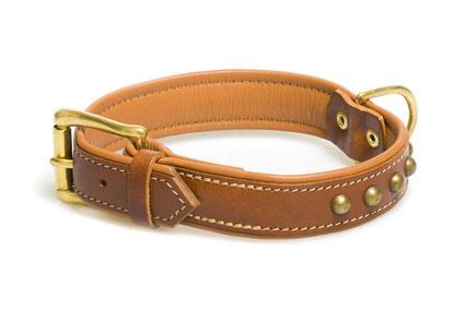 Typisches Hundehalsband aus Leder mit Schnalle.