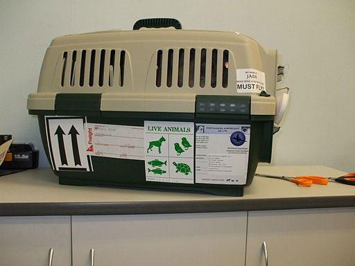 Hundetransportbox für Flüge