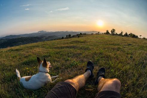 Bei Wanderungen mit dem Hund sollte auf das richtige Equipment geachtet werden.