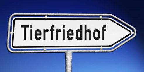 In Deutschland gibt es immer mehr Friedhöfe für Hunde.