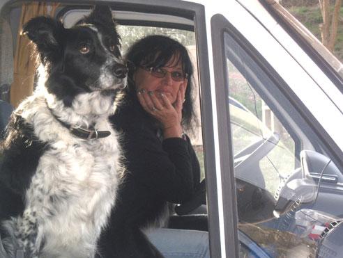 Unterwegs mit dem Hund im Auto.