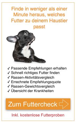 Futtercheck_Mobile-1