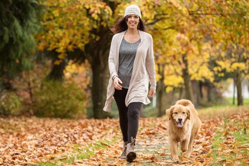 Auch alten Hunden tut ein Mindestmaß an Beschäftigung und Bewegung gut.
