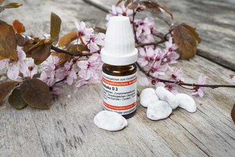 Die Homöopathie für den Hund ist nur eine von vielen alternativen Heilmethoden.