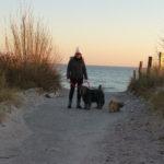 Urlaub mit Hund im Winter an der Ostsee kann sehr erholsam sein.