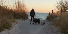 Urlaub-mit-Hund-an-der-Ostssee
