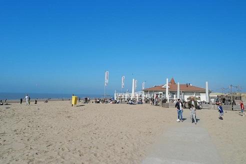 Nordsee und Ostsee sind immer gut geeignete Reiseziele für den Urlaub mit Hund.
