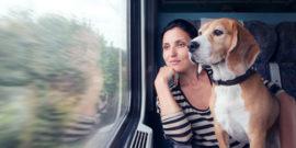 Urlaubsanreise-mit-Hund