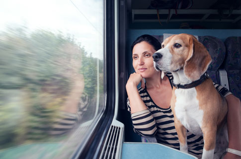 Anreise mit Hund und Bahn