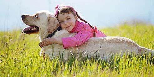 Der Hund gilt als der beste Freund des Menschen.