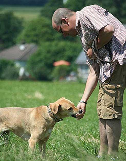 Ein eigenes Haus zu besitzen, kann für den Hundehalter viele Vorteile haben.